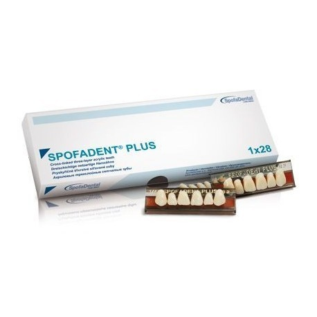 Гарнитуры из 28 зубов Spofadent plus Спофадент Плюс (1х28)