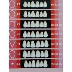 Гарнитуры передних верхних зубов С2/25-зубы искусственные пластмассовые Эстедент-02