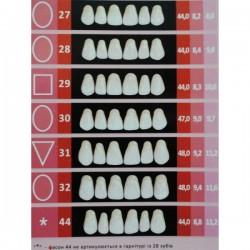 Гарнитуры передних верхних зубов С2/27-зубы искусственные пластмассовые Эстедент-02